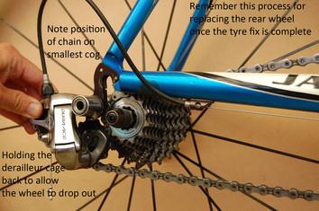 remove rear wheel