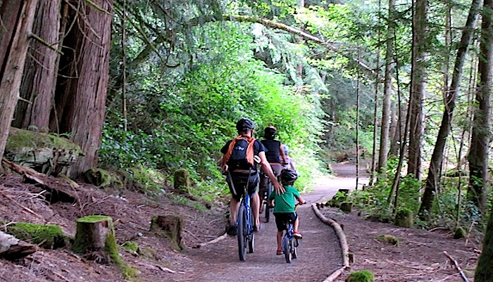 Family cycling on forest path