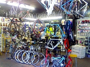 local bicycle shop