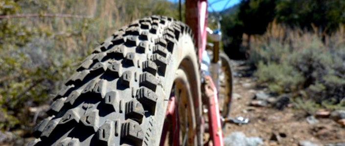 WTB Weirwolf LT MTB tire