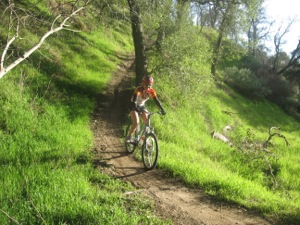 Riding Mountain Bike Down Hill