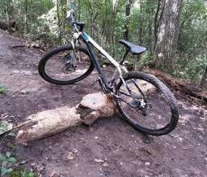 Mountain bike obstacles