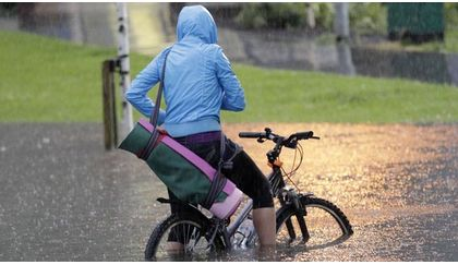 Read 'Wet weather survival guide'