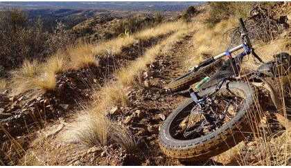 Read 'How to choose the best tires for mountain biking'