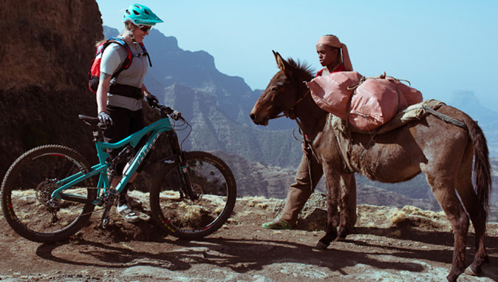 Bike meets donkey