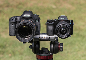 Canon 5D DSLR vs Sony A7 Mirrorless Camera Comparison
