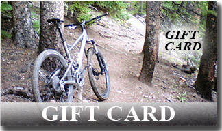 Get a gift card at your local bike shop