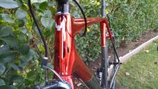 Allied Cycle Works Alfa head tube