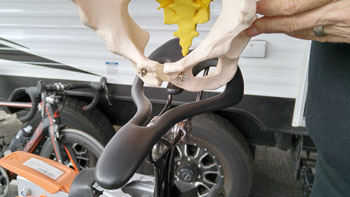 Dr. Marcel shows how the sit bones fit within the opening of the Infinity bike saddle