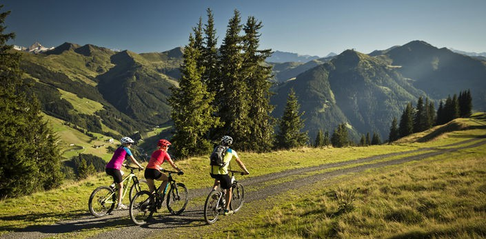 Bike parks aren't just about downhill riding - via www.astrid.at