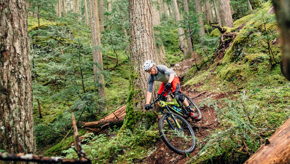 How To Ride Slippery Roots. photo: AJ Barlas for Transition Bikes