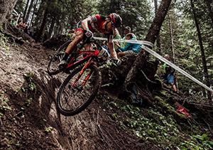 Commit - slippery roots bike skills