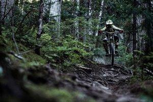 Momentum - slippery roots bike skills