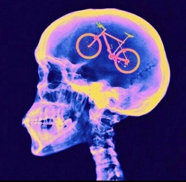 Skull x-ray with bicycle