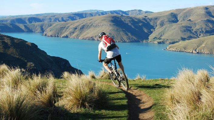 NZ MTB Dreamer Bike Tour from Roar Adventures